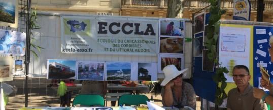 03/09: Stand d'ECCLA au Forum des Associations à Narbonne