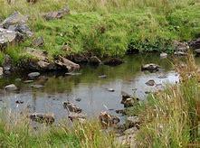 Pesticides : l'alerte sur nos cours d'eau Signez la pétition