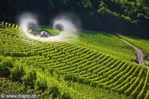 29/08 :  Phytosanitaires, contribution  d'ECCLA concernant le projet d'arrêté préfectoral